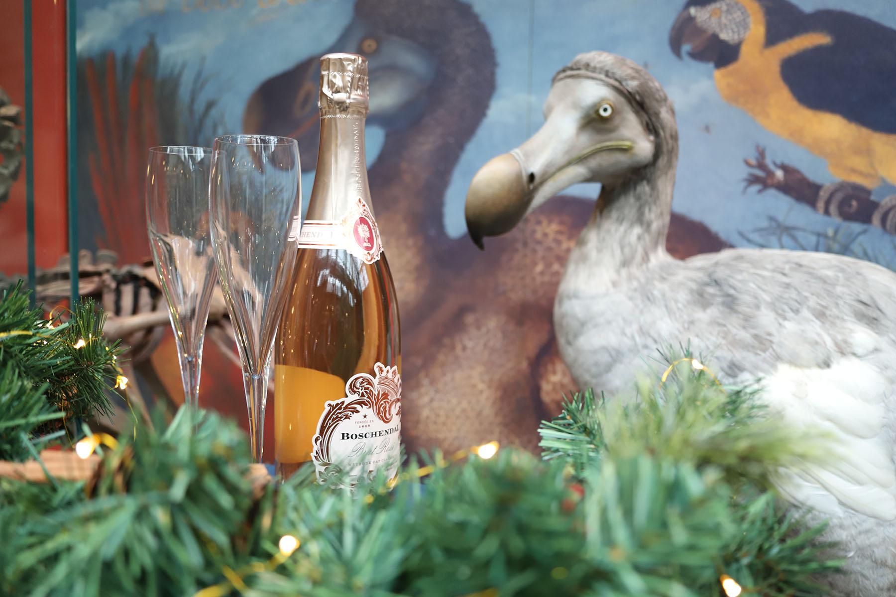 christmas dodo