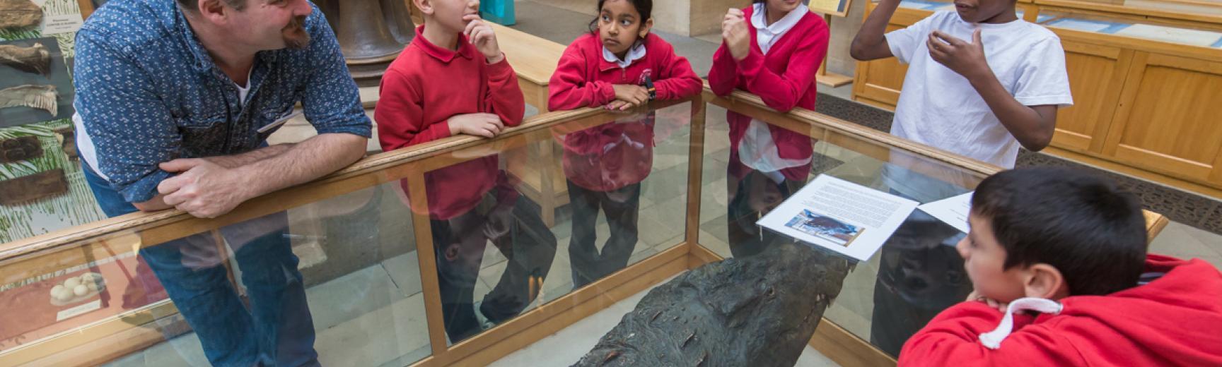 Primary school children learning