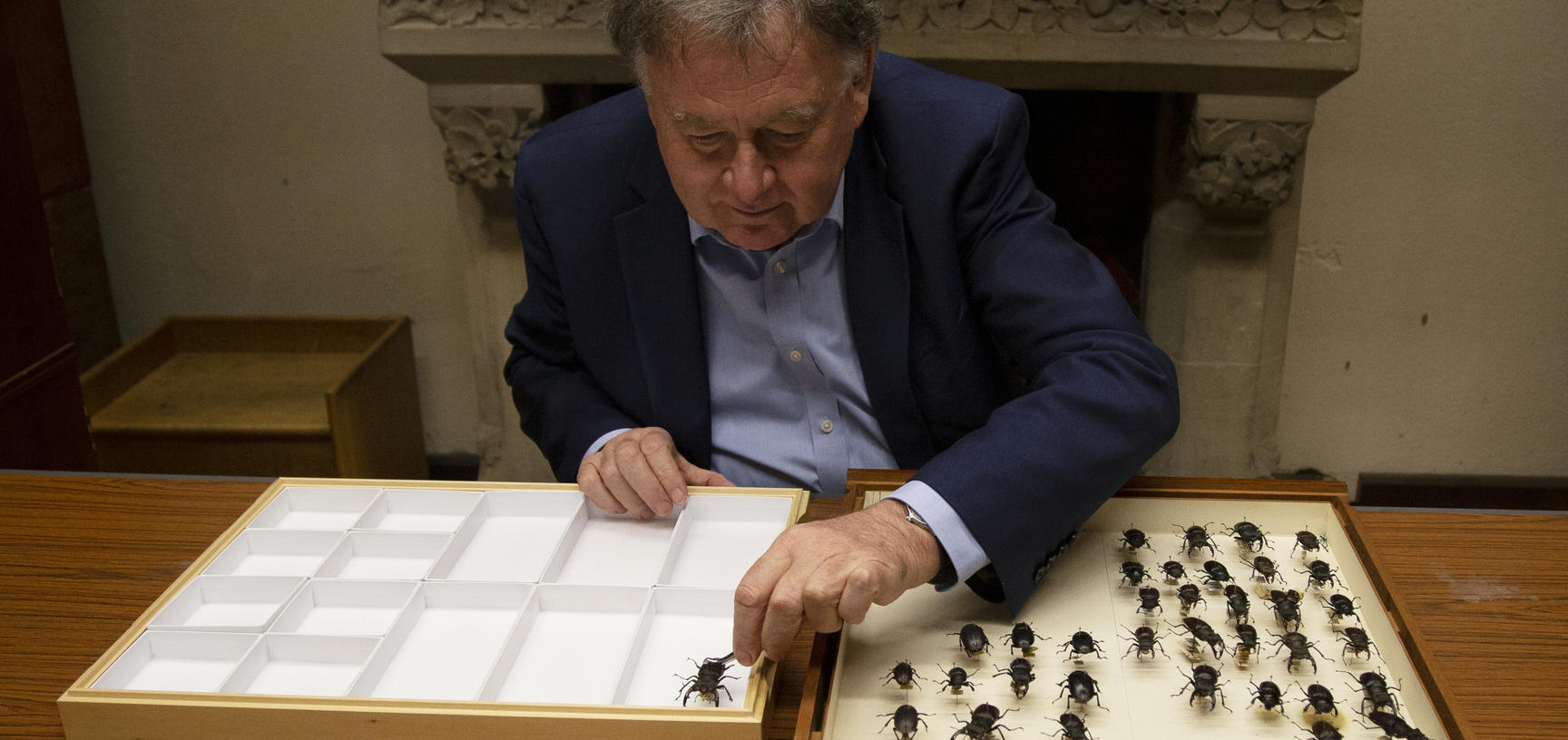Image of Paul Smith with insects from the OUMNH collection