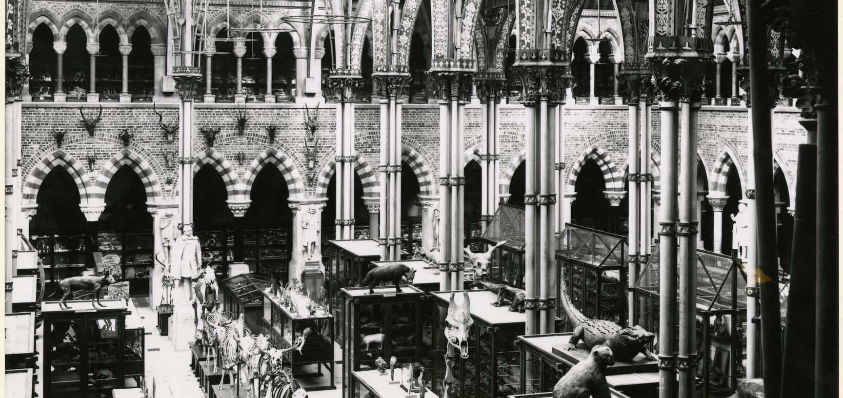 archive photograph of museum court 1890