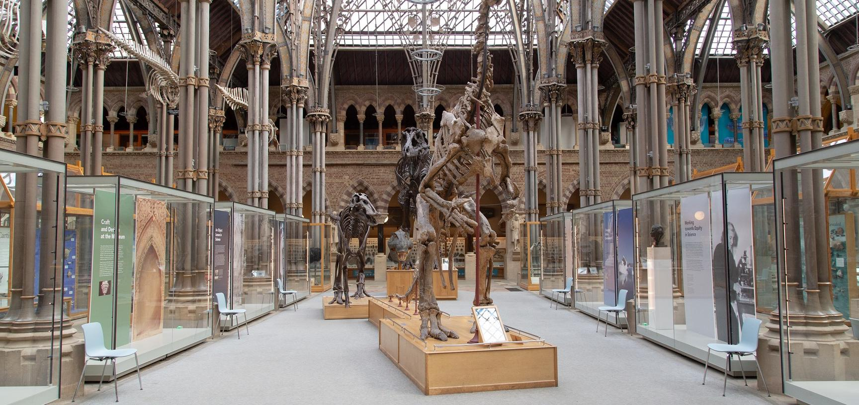 View of cathedral-like iron and glass court featuring two central dinosaur skeletons flanked by glass showcases