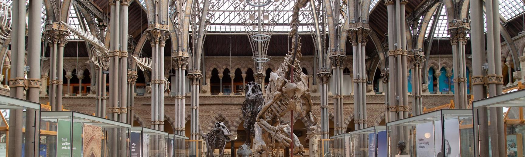 Interior shot of court of iron architecture and glass roof, hosing glass showcases and dinosaur skeletons