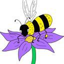 Bee on a flower illustration