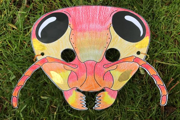 ant mask example