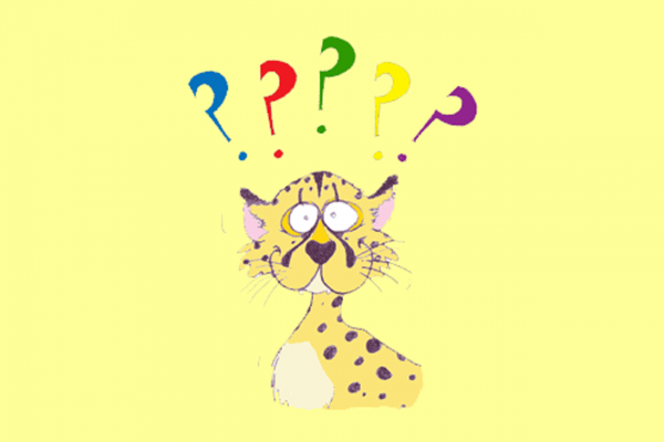 cheetah learning zone