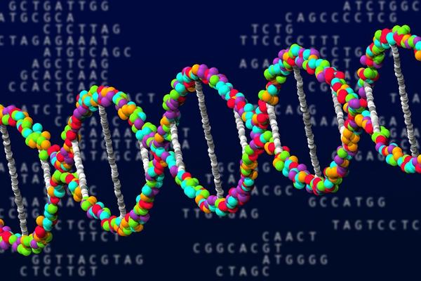 dna with code