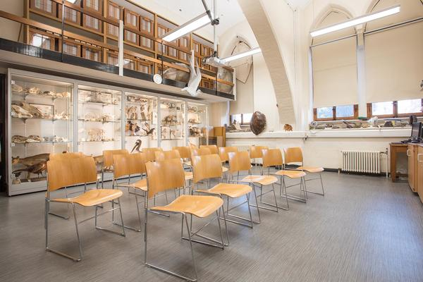 Seminar room Oxford University Museum of Natural History