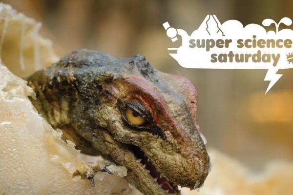 sss prehistoric creatures
