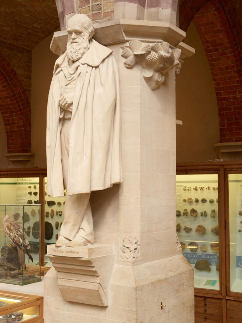 The statue of Charles Darwin carved by Henry Hope Pinker and unveiled in the Museum on 14 June 1899