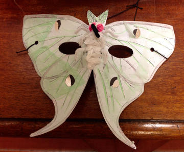 Moth mask at the Museum