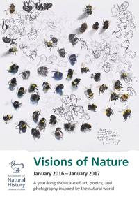 Report cover image showing a painting and ink drawing of bumblebees crawling on the page